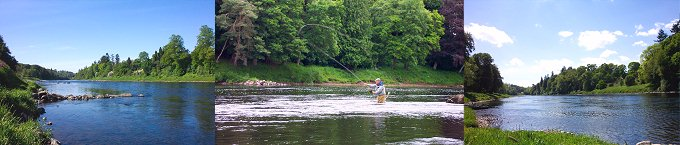 Salmon Fishing Scotland - The River Tay in Perthshire.